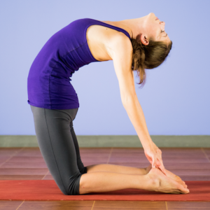 <em>Edit Article</em> 20-minute Vinyasa Flow
