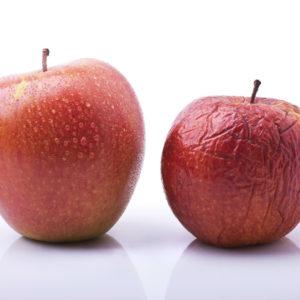 "<img src=""aging apple.jpg"" alt=""Aging apple representing aging process""/>"