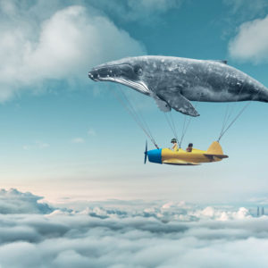 Flying whale digital drawing