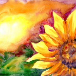 Illustration of bright sunflower and sunshine