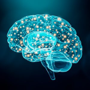 A brain illustrates how EMDR can rewrite neural pathways