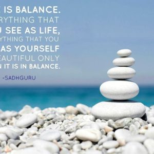 Sadhguru quote with balanced stones and ocean