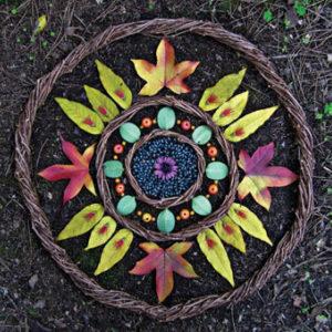 Sacredness of Seeds