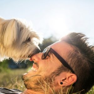 Small dog licking man's nose in grass