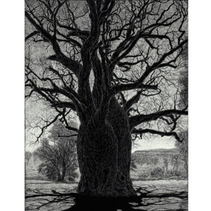Large black and white tree