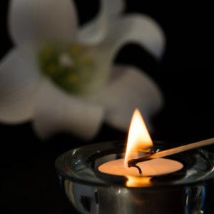 <em>Edit Article</em> Rewiring Grief: Creating Healing Thoughts