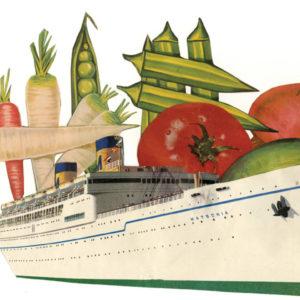Salad Cruise
