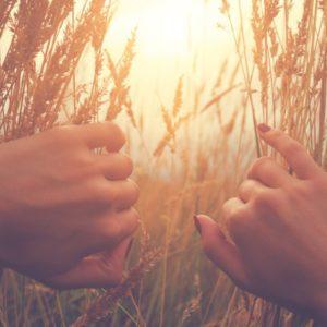 Cover image of Hope, Make, Heal