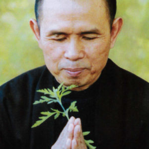 Thich Nhat Hanh, 2003