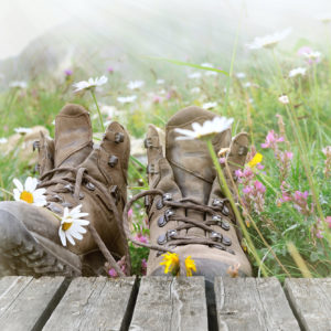 Flowers in hiking boots