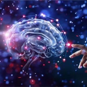 Brain and belief illustration