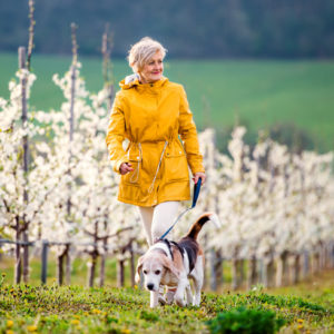woman walking dog in spring orchard