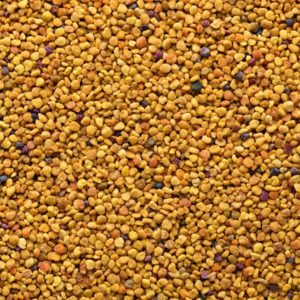 Closeup of bee pollen
