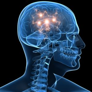 electricity in the brain