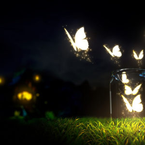 Butterflies and jar