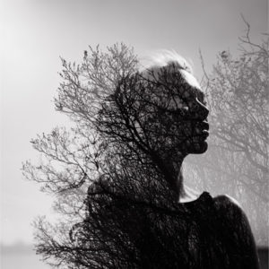 woman and tree branches
