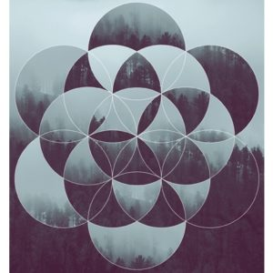 Sacred geometry and forest