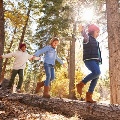 Children playing on log in forest