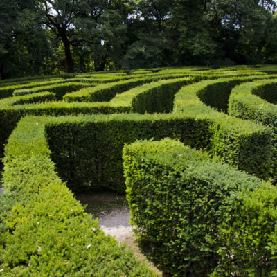 A green labyrinth illustrates the winding paths of a labyrinth