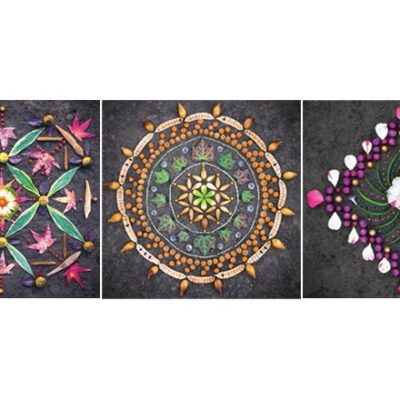 Three mandalas made from items foraged in nature