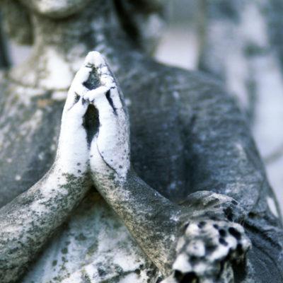 <em>Edit Article</em> Why Evolution Made Forgiveness Difficult