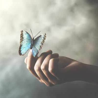 hand holding blue butterfly