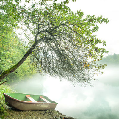 On the shore by the river, under a tree, there is a lonely boat