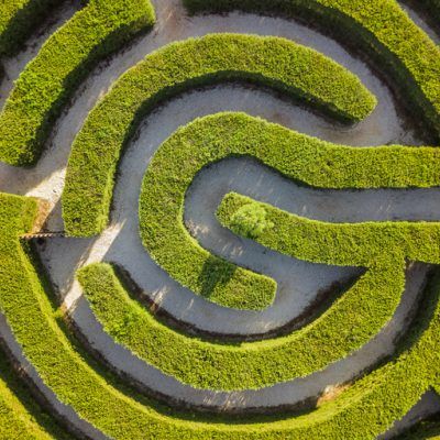 Maze of bushes for Kevin Anderson Soul of Therapy article