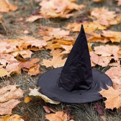 witch hat in leaves