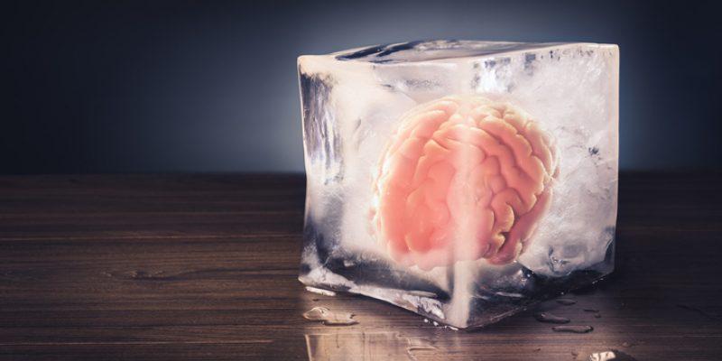 a brain frozen in a block of ice