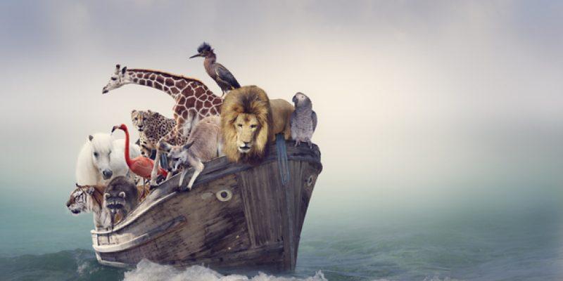 Wild animals piled into Noah's Ark at sea