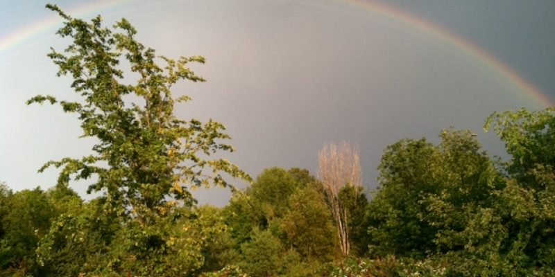 """Are Rainbows """"Real""""?"""