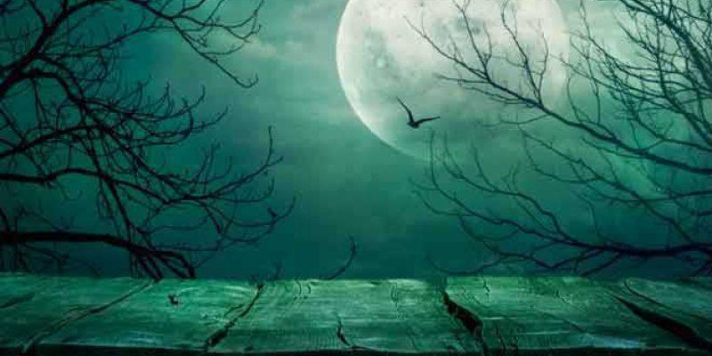 <em>Edit Blog entry</em> Some of Us Really Need Halloween