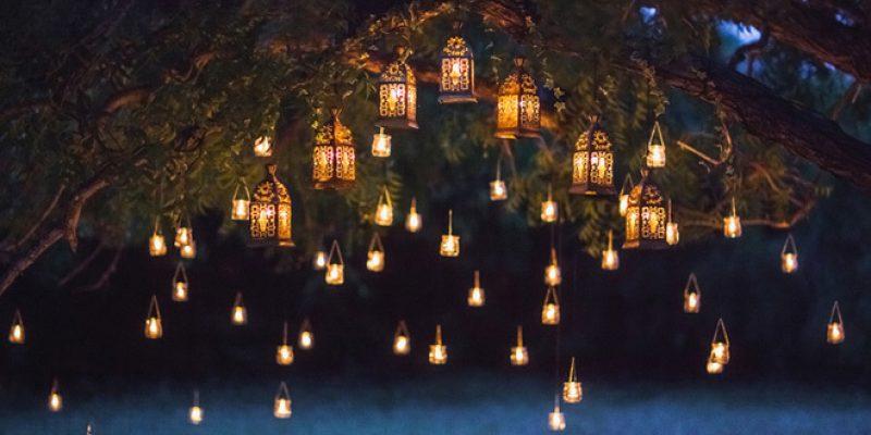 light in trees