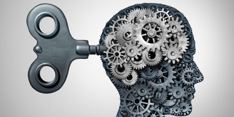 gears in brain