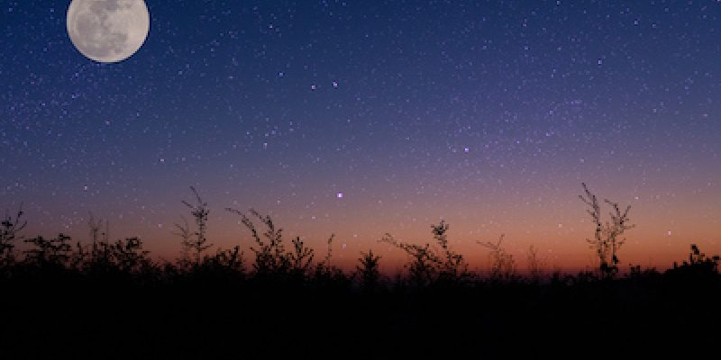 night sky over a field with moon guiding toward restful dreams