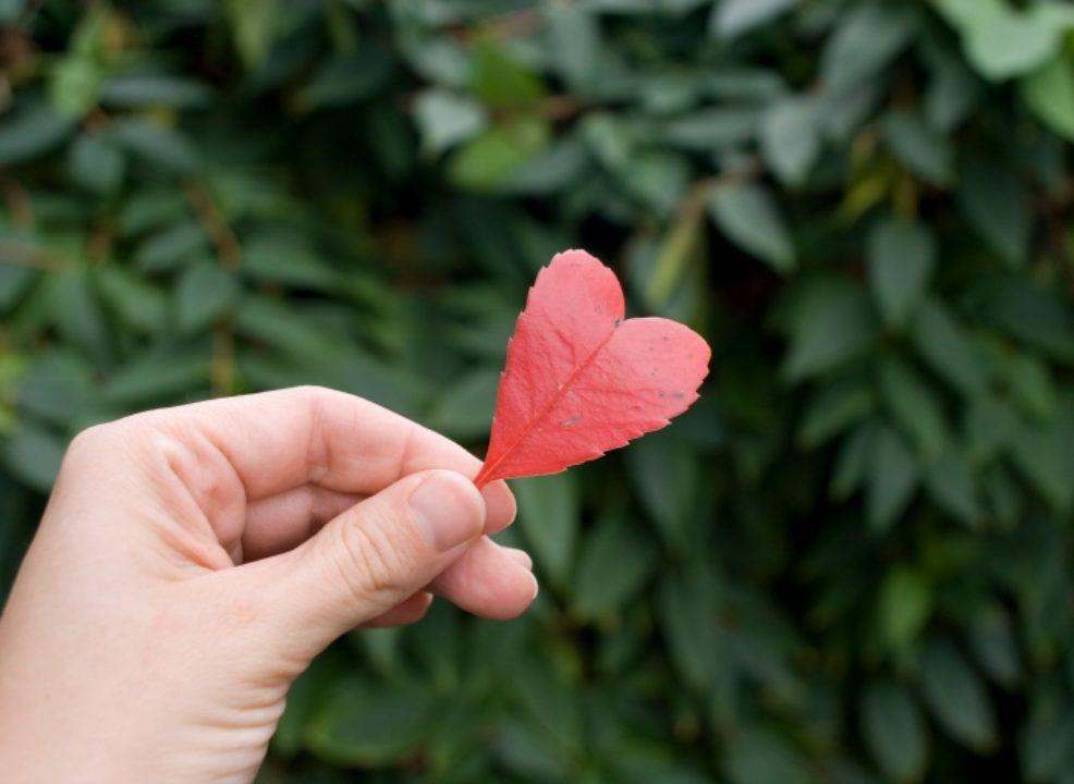 Valentine's Day: Don't Seek Love, Be Love
