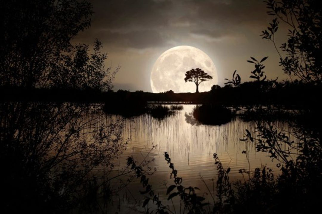 <em>Edit Blog entry</em> The Moon's Effect on Sleep