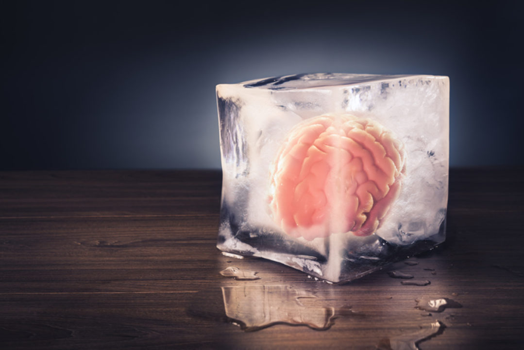 a brain frozen in a block of ice