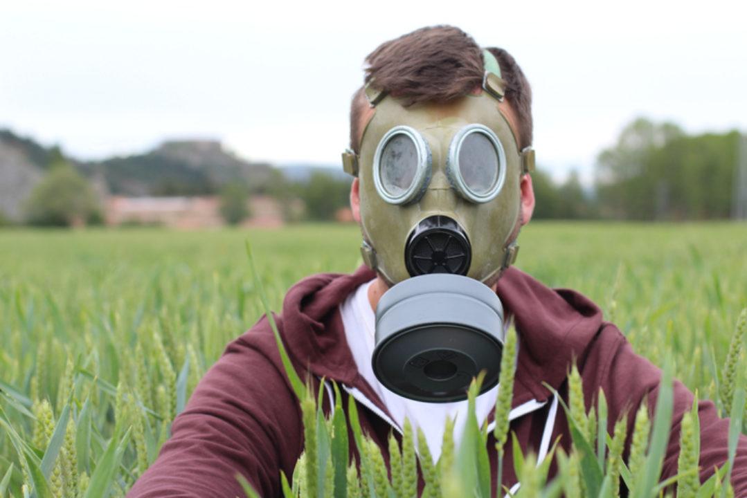 Man wearing breathing mask in wheat field.