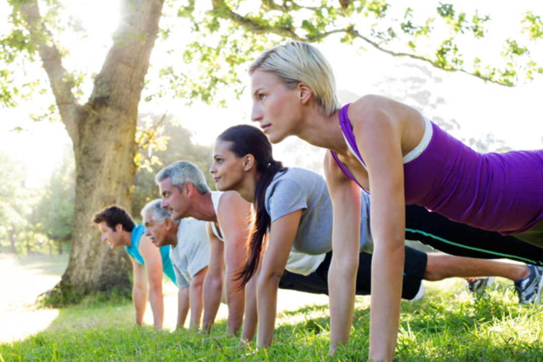 People exercising in plank pose in the park
