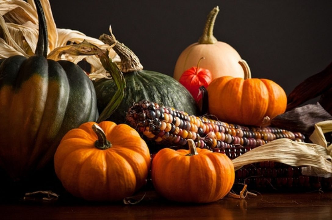 Harvest Ritual: Feast On Your Life