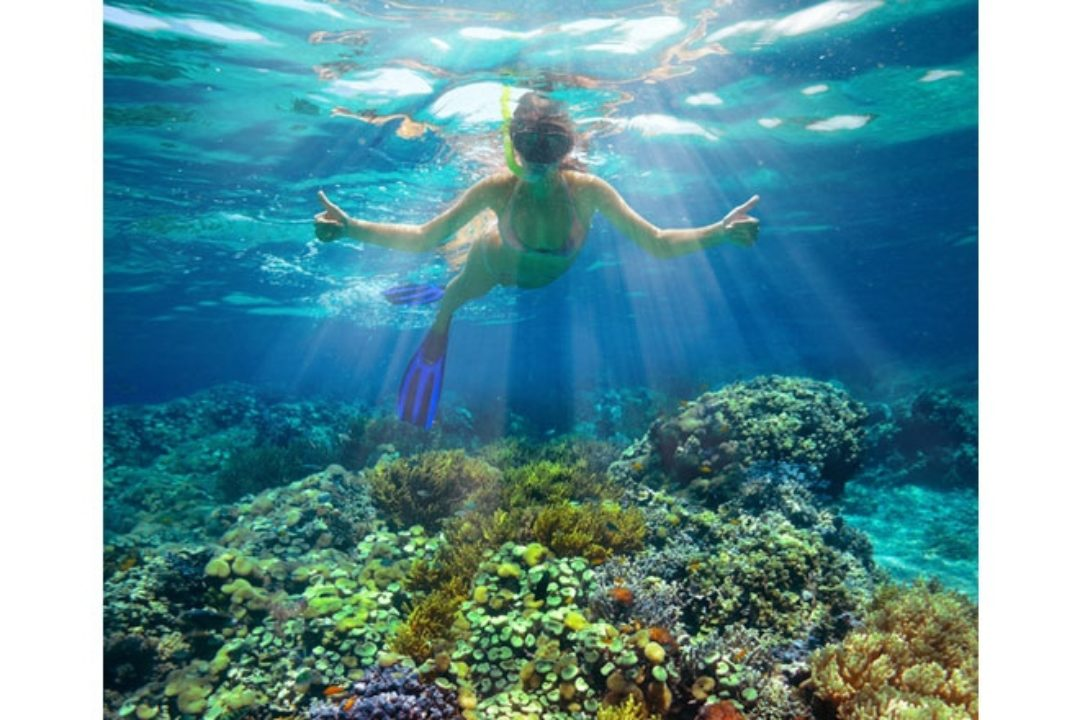 Woman swimming in coral reef