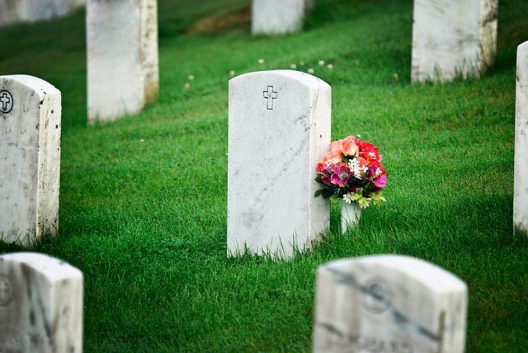 Make Peace on Veterans Day
