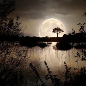 <em>Edit Blog entry</em> The Moon's Effect on Sleep