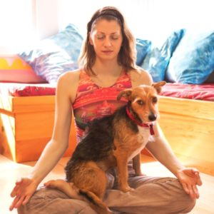 Puppy Guru: Why My Dog is My Best Yoga Teacher