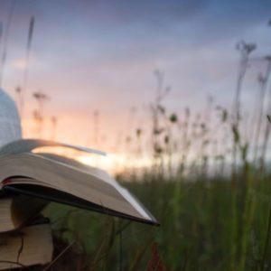 <em>Edit Blog entry</em> Editor's Picks: Books, Music, Film