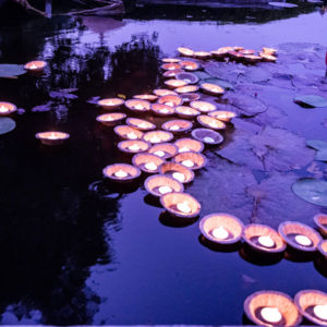light on pond