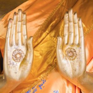 <em>Edit Blog entry</em> How Meditation Enhances the Senses