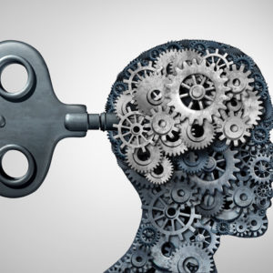 gears in brain